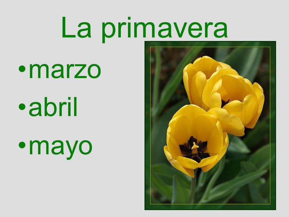 La primavera marzo abril mayo