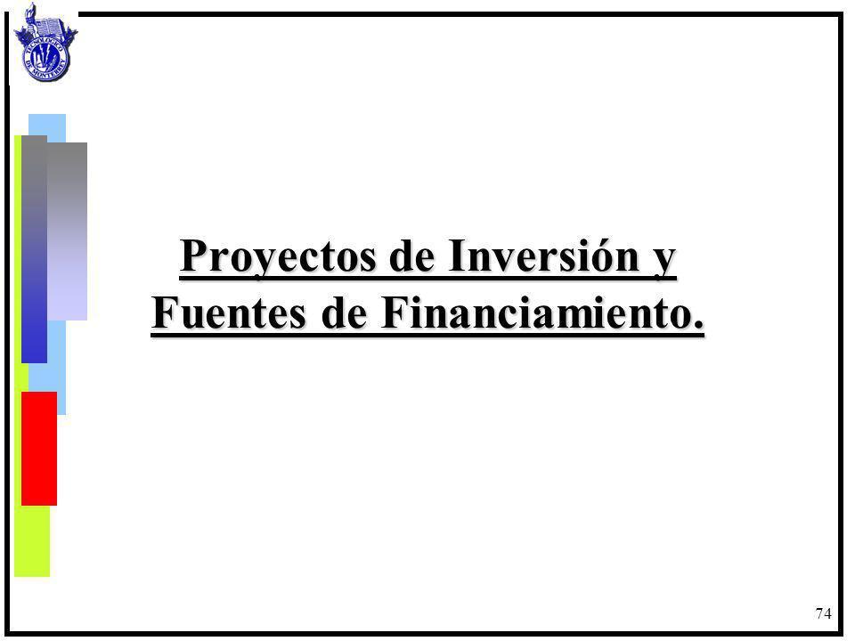 Proyectos de Inversión y Fuentes de Financiamiento.