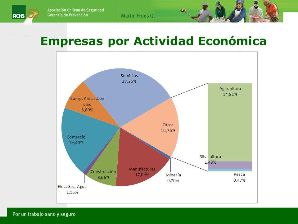 Empresas por Actividad Económica