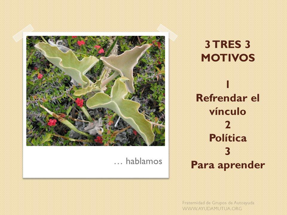 3 TRES 3 MOTIVOS 1 Refrendar el vínculo 2 Política 3 Para aprender