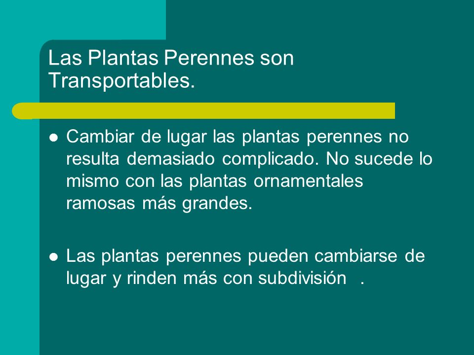 Las Plantas Perennes son Transportables.