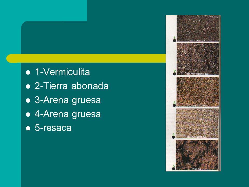 1-Vermiculita 2-Tierra abonada 3-Arena gruesa 4-Arena gruesa 5-resaca