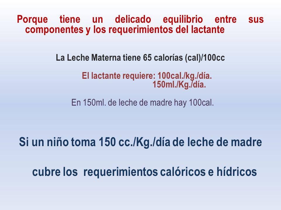 Porque tiene un delicado equilibrio entre sus componentes y los requerimientos del lactante