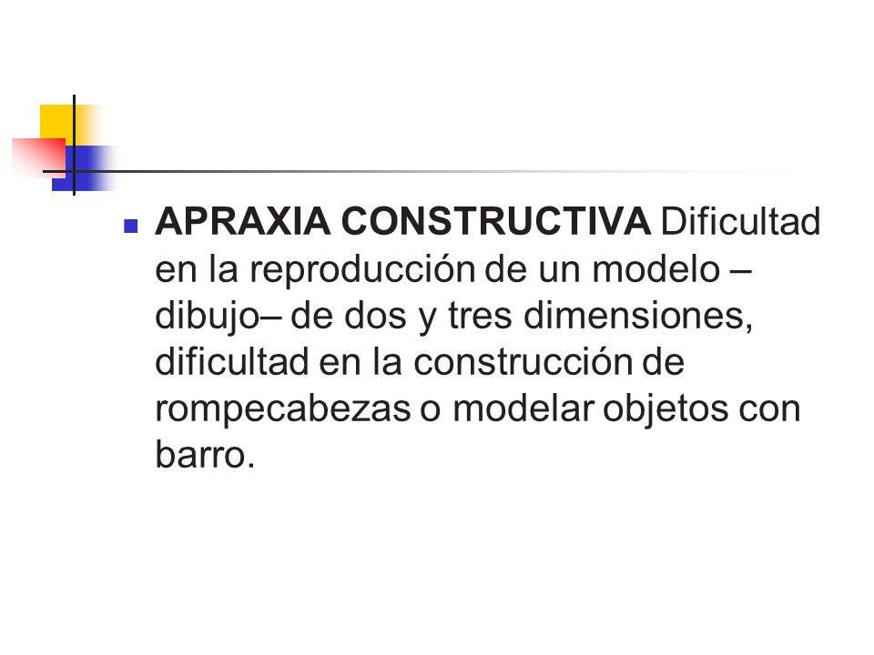 APRAXIA CONSTRUCTIVA Dificultad en la reproducción de un modelo –dibujo– de dos y tres dimensiones, dificultad en la construcción de rompecabezas o modelar objetos con barro.