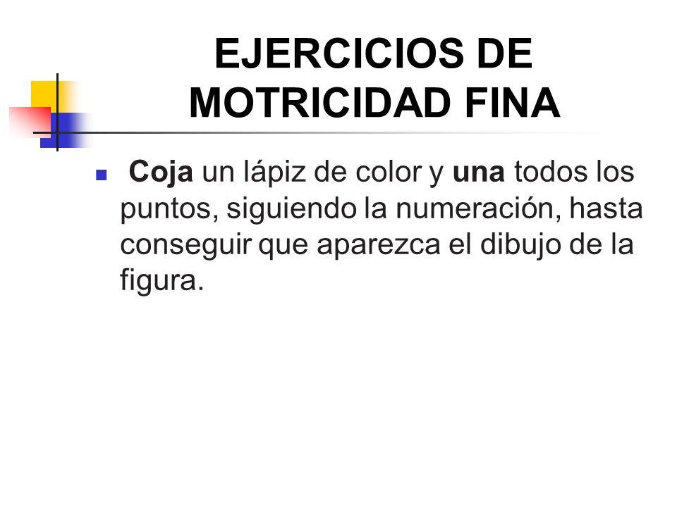 EJERCICIOS DE MOTRICIDAD FINA
