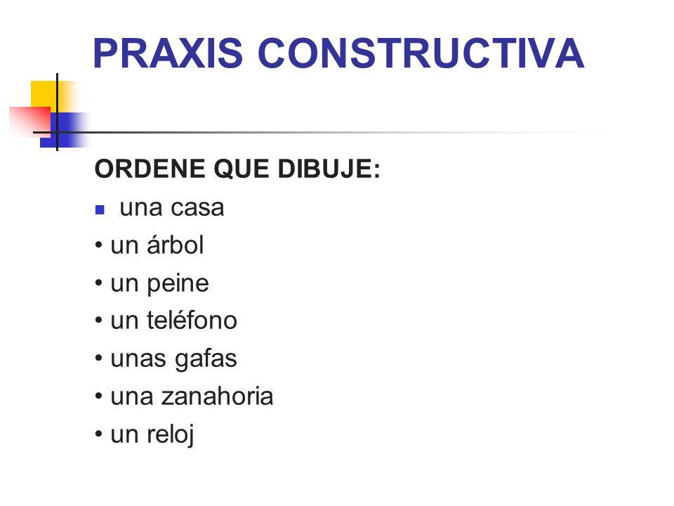 PRAXIS CONSTRUCTIVA ORDENE QUE DIBUJE: una casa • un árbol • un peine