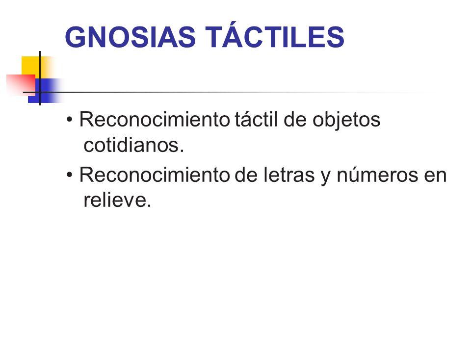 GNOSIAS TÁCTILES • Reconocimiento táctil de objetos cotidianos.
