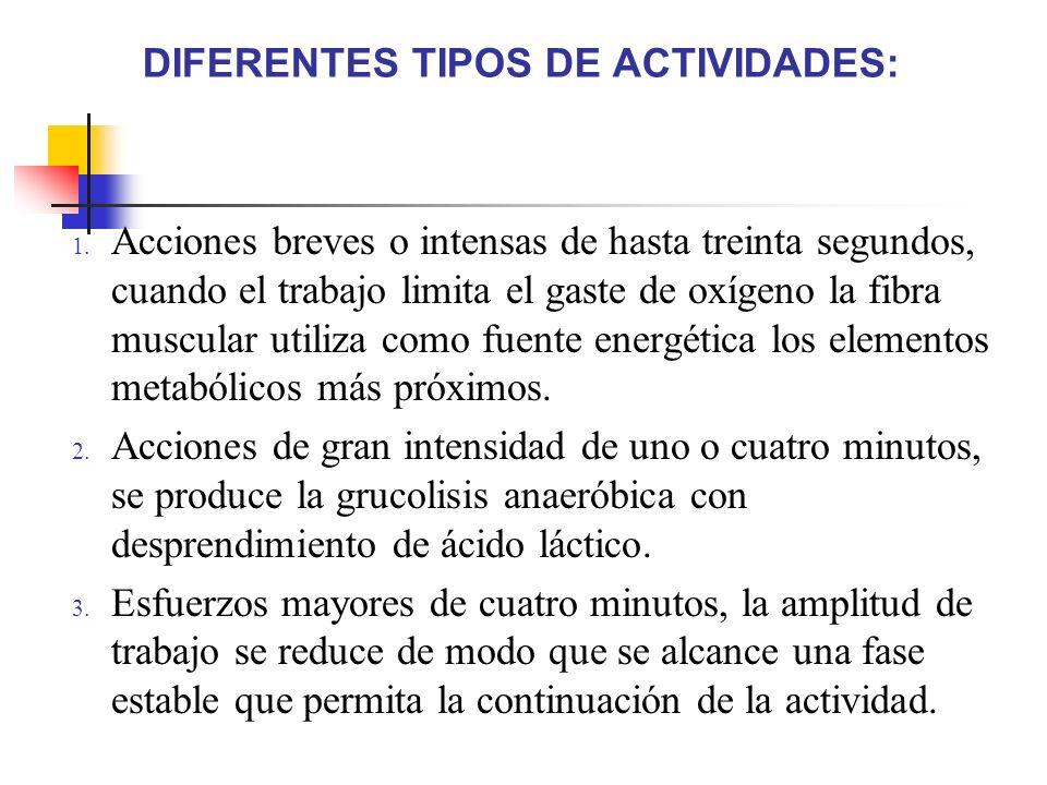 DIFERENTES TIPOS DE ACTIVIDADES: