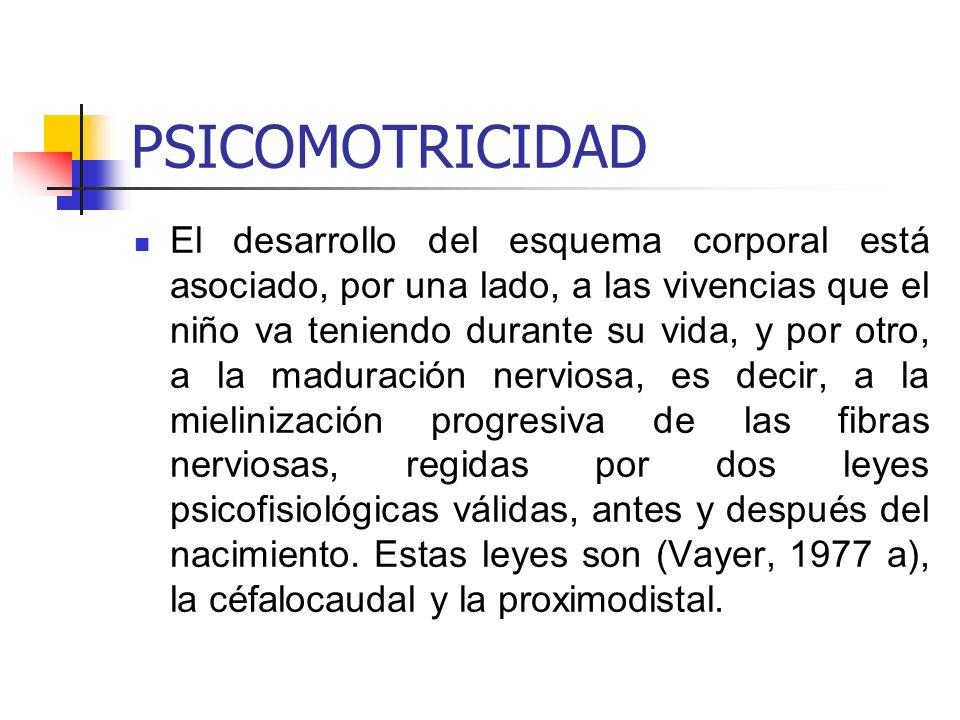 PSICOMOTRICIDAD
