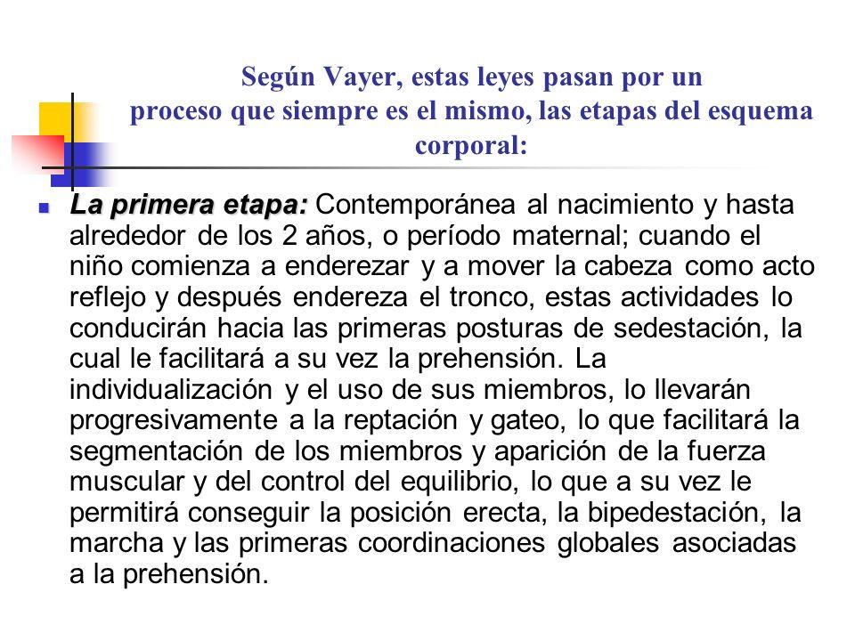 Según Vayer, estas leyes pasan por un proceso que siempre es el mismo, las etapas del esquema corporal: