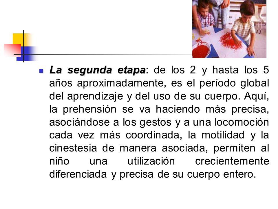 La segunda etapa: de los 2 y hasta los 5 años aproximadamente, es el período global del aprendizaje y del uso de su cuerpo.