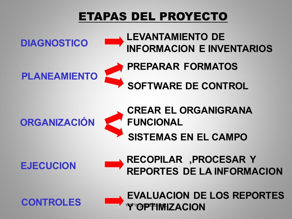 ETAPAS DEL PROYECTO LEVANTAMIENTO DE INFORMACION E INVENTARIOS