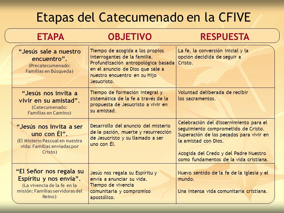 Etapas del Catecumenado en la CFIVE