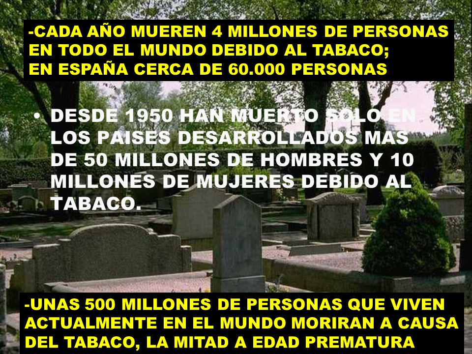 -CADA AÑO MUEREN 4 MILLONES DE PERSONAS