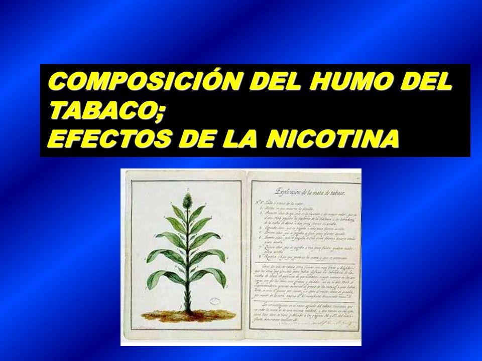 COMPOSICIÓN DEL HUMO DEL TABACO;