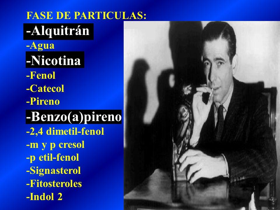 -Alquitrán -Nicotina -Benzo(a)pireno FASE DE PARTICULAS: -Agua -Fenol