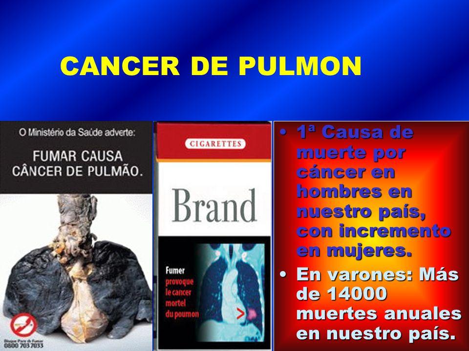 CANCER DE PULMON 1ª Causa de muerte por cáncer en hombres en nuestro país, con incremento en mujeres.