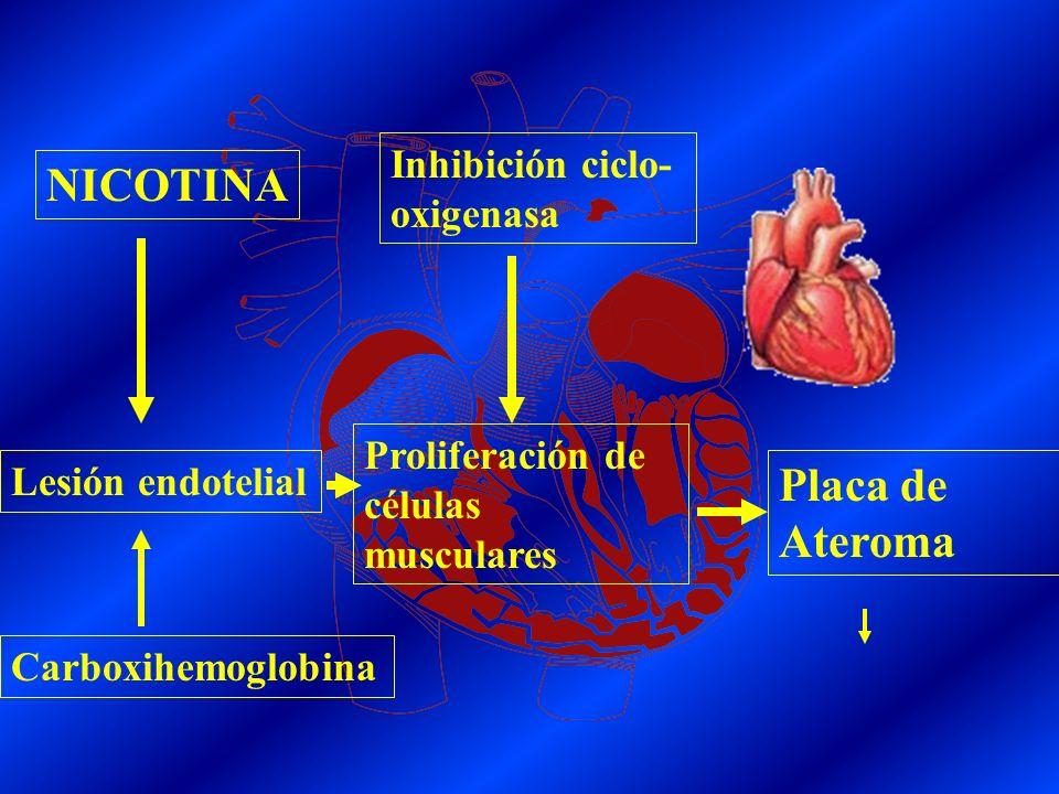 NICOTINA Placa de Ateroma Inhibición ciclo-oxigenasa