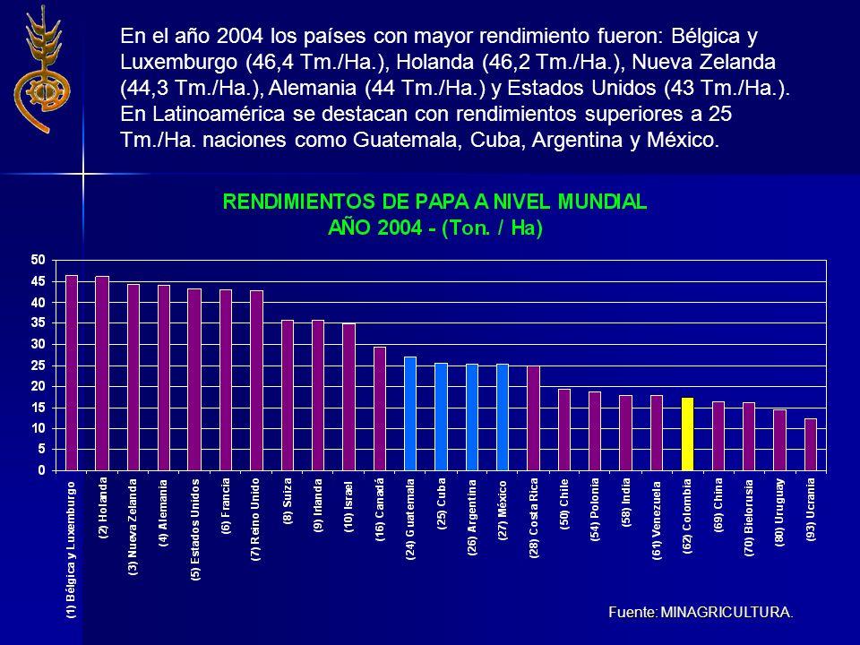En el año 2004 los países con mayor rendimiento fueron: Bélgica y Luxemburgo (46,4 Tm./Ha.), Holanda (46,2 Tm./Ha.), Nueva Zelanda (44,3 Tm./Ha.), Alemania (44 Tm./Ha.) y Estados Unidos (43 Tm./Ha.). En Latinoamérica se destacan con rendimientos superiores a 25 Tm./Ha. naciones como Guatemala, Cuba, Argentina y México.