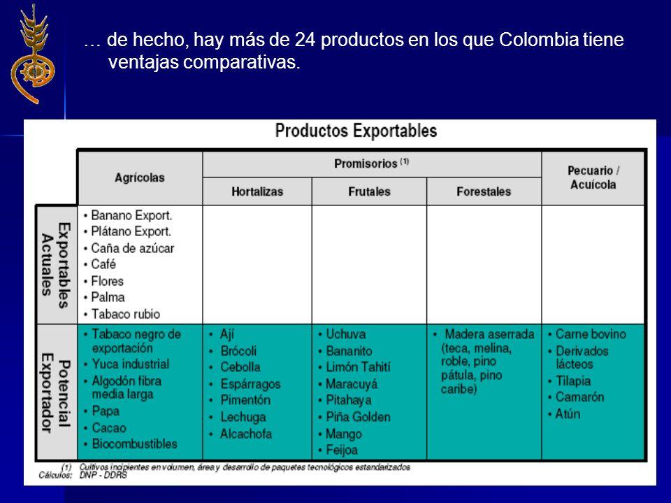 … de hecho, hay más de 24 productos en los que Colombia tiene ventajas comparativas.