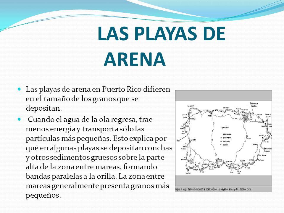 LAS PLAYAS DE ARENALas playas de arena en Puerto Rico difieren en el tamaño de los granos que se depositan.
