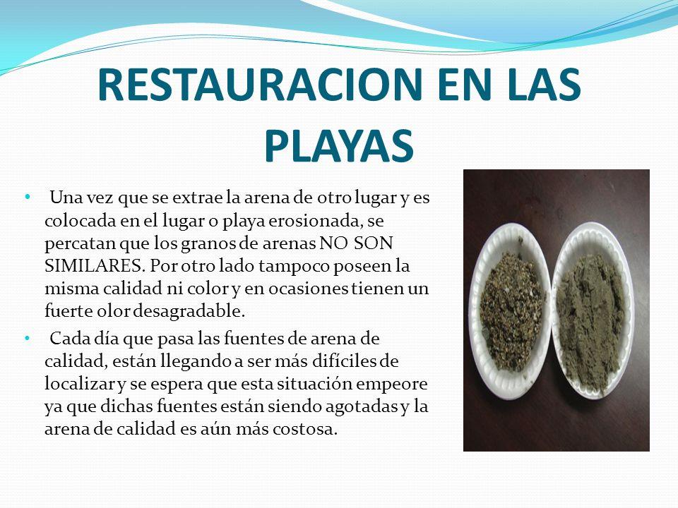 RESTAURACION EN LAS PLAYAS