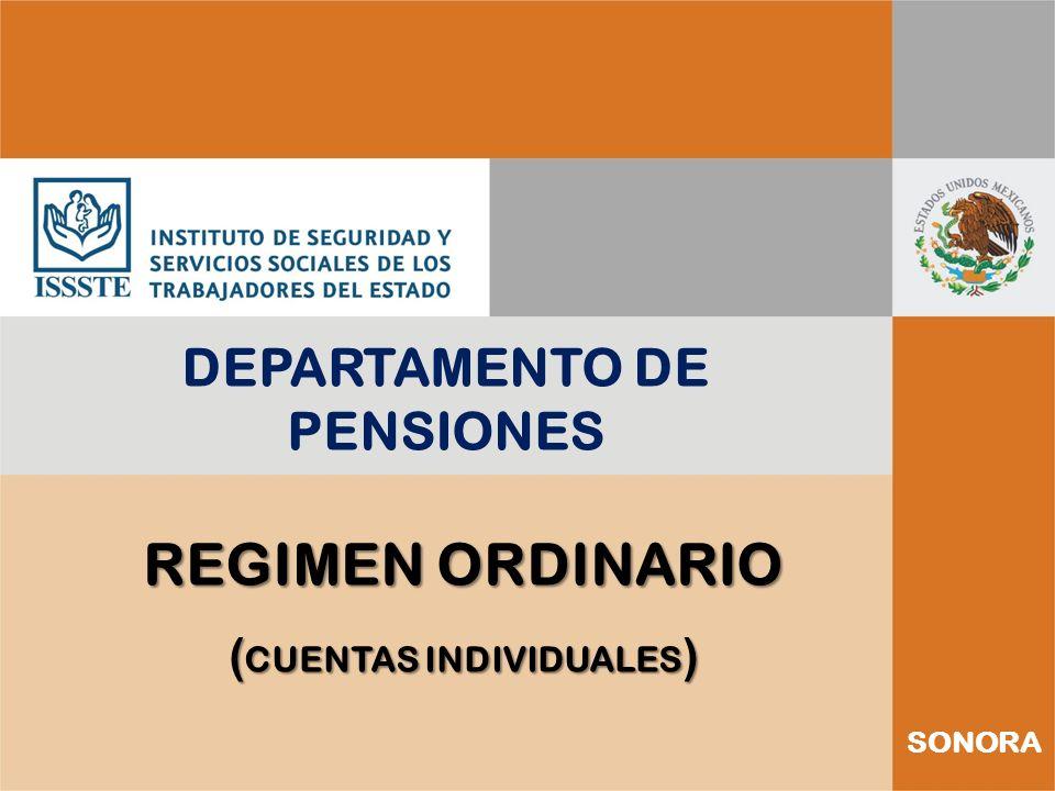DEPARTAMENTO DE PENSIONES (CUENTAS INDIVIDUALES)