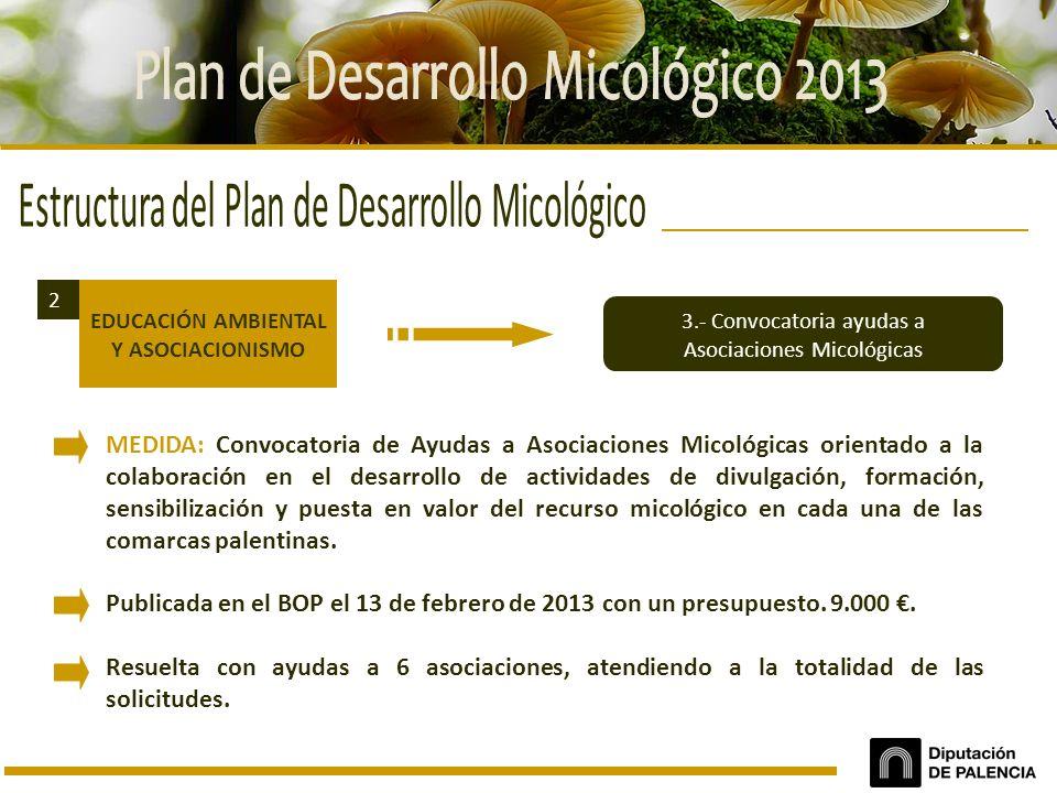 Plan de Desarrollo Micológico 2013