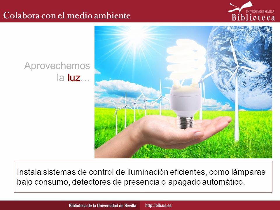 Aprovechemos la luz… Colabora con el medio ambiente
