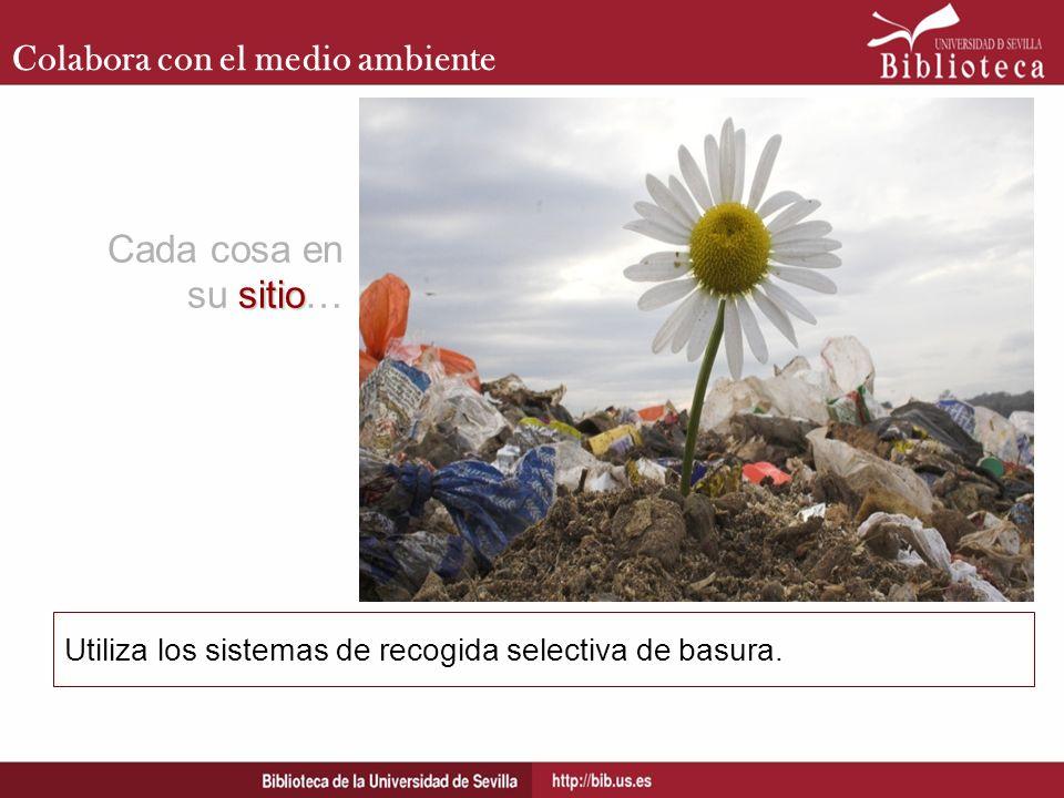 Cada cosa en su sitio… Colabora con el medio ambiente