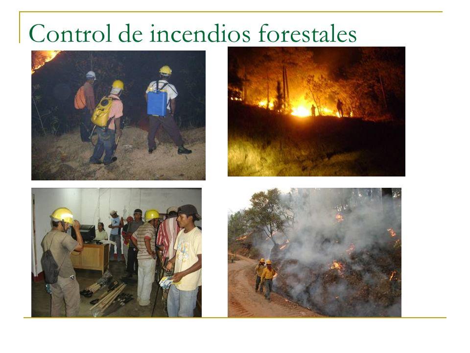 Control de incendios forestales