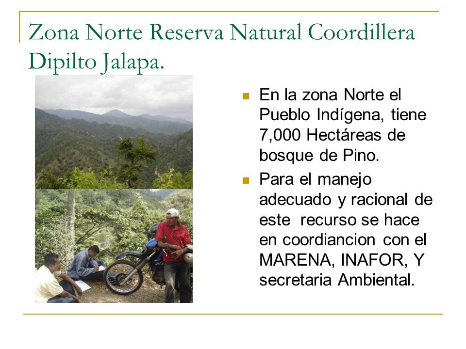 Zona Norte Reserva Natural Coordillera Dipilto Jalapa.