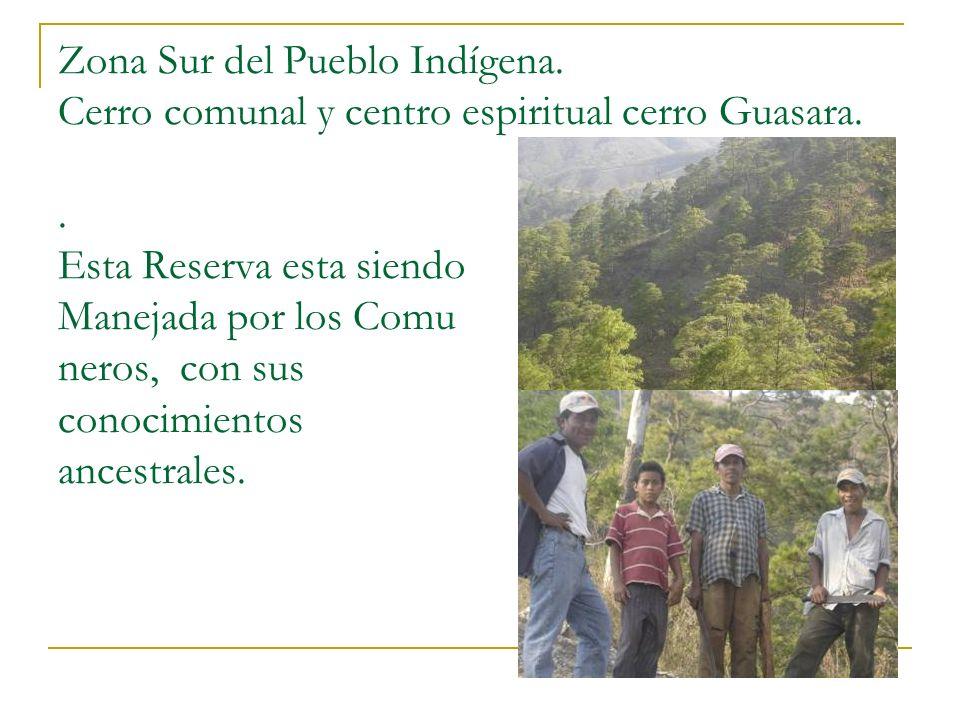 Zona Sur del Pueblo Indígena