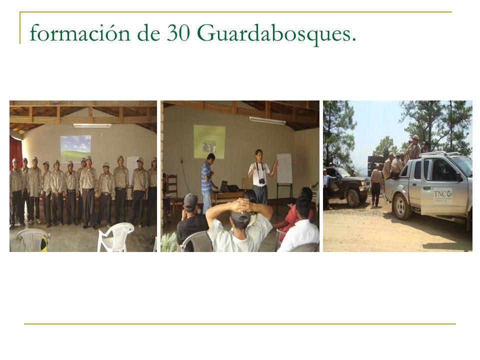 formación de 30 Guardabosques.