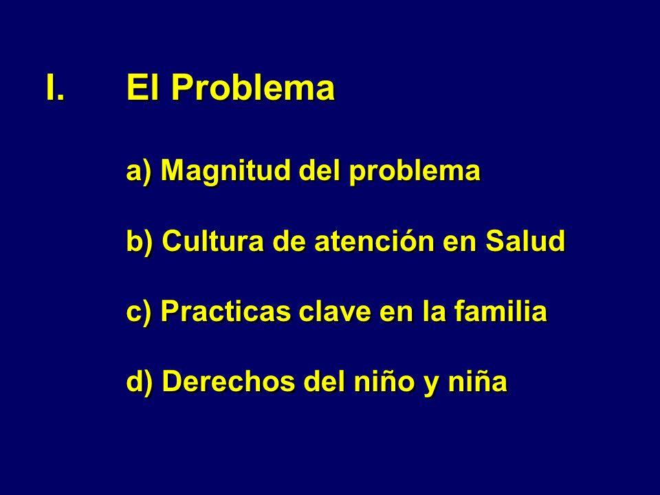 El Problema a) Magnitud del problema b) Cultura de atención en Salud c) Practicas clave en la familia d) Derechos del niño y niña
