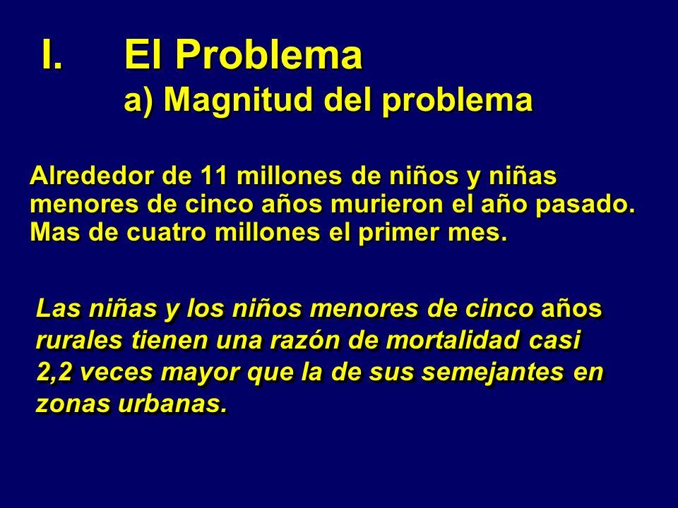 El Problema a) Magnitud del problema