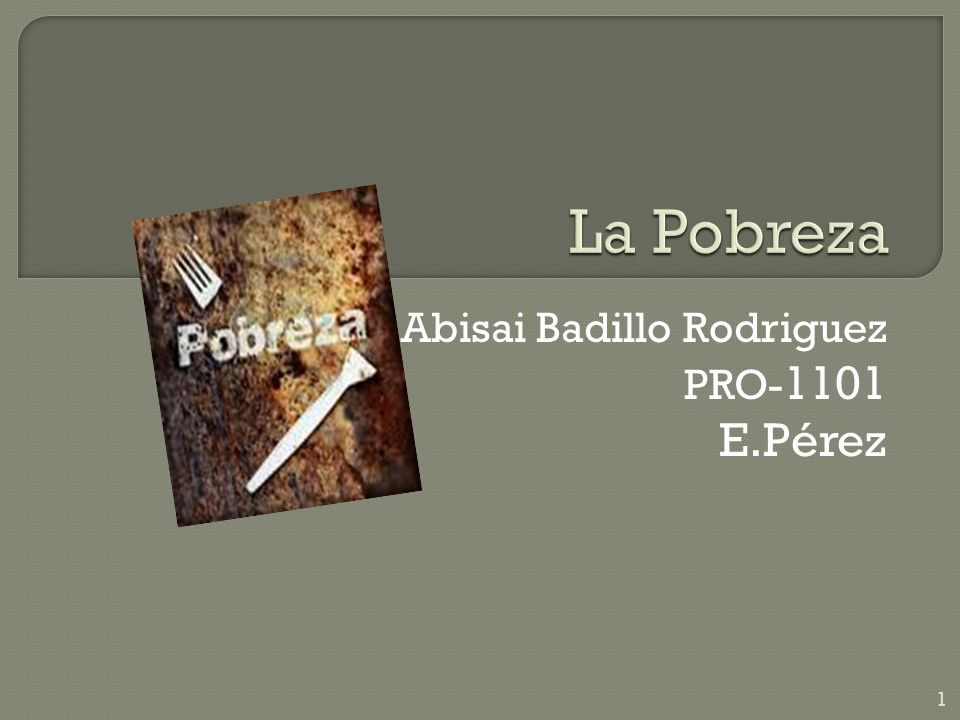 Abisai Badillo Rodriguez PRO-1101 E.Pérez