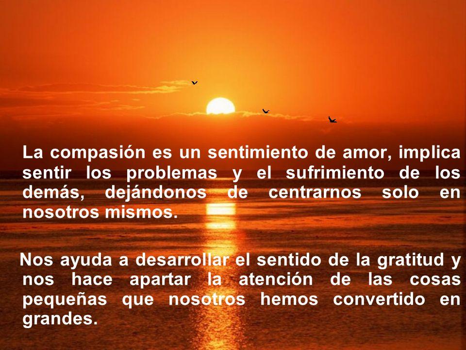 La compasión es un sentimiento de amor, implica sentir los problemas y el sufrimiento de los demás, dejándonos de centrarnos solo en nosotros mismos.
