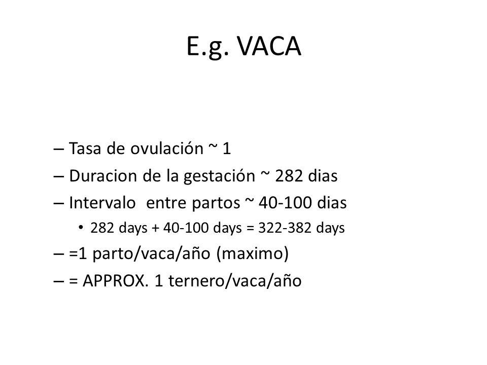 E.g. VACA Tasa de ovulación ~ 1 Duracion de la gestación ~ 282 dias