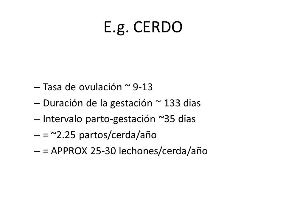 E.g. CERDO Tasa de ovulación ~ 9-13