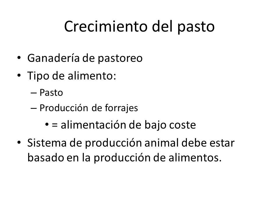 Crecimiento del pasto Ganadería de pastoreo Tipo de alimento: