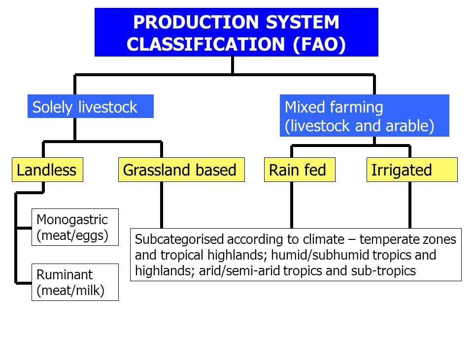 PRODUCTION SYSTEM CLASSIFICATION (FAO)