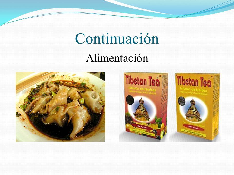 Continuación Alimentación
