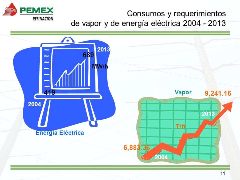 Consumos y requerimientos de vapor y de energía eléctrica 2004 - 2013