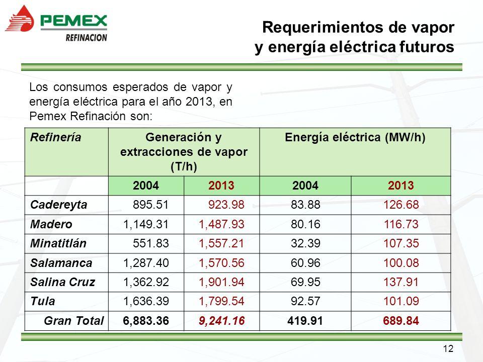Requerimientos de vapor y energía eléctrica futuros