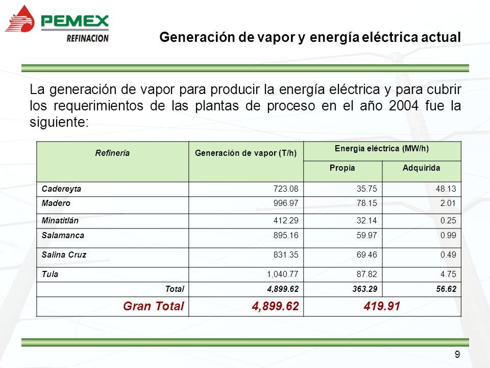 Generación de vapor y energía eléctrica actual