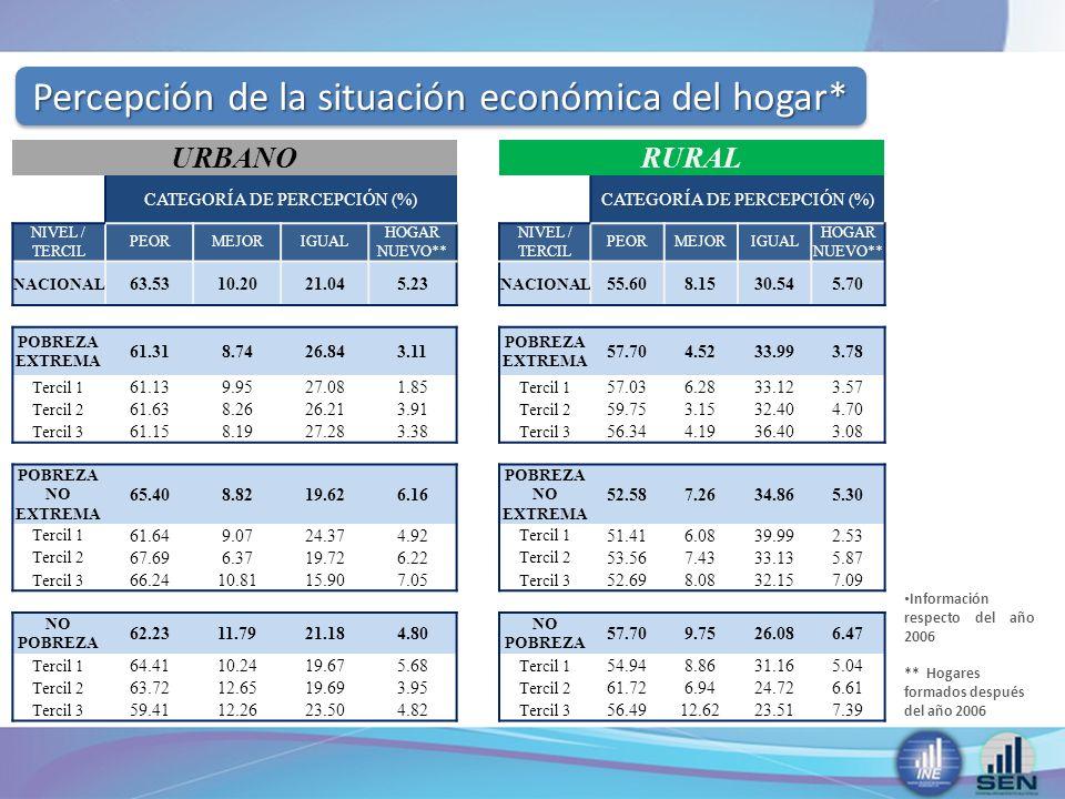Percepción de la situación económica del hogar*