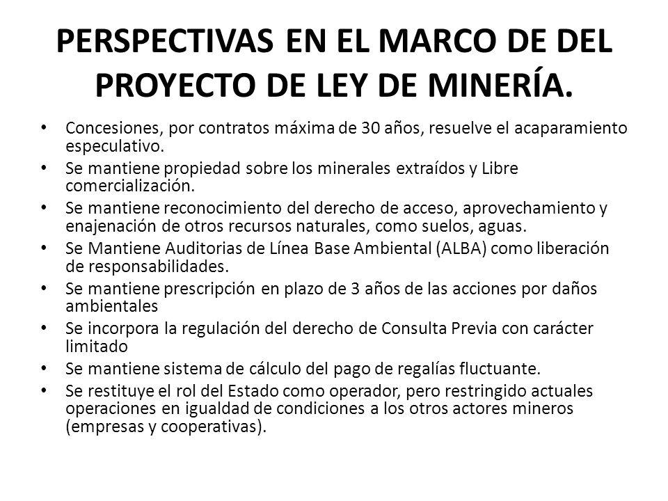 PERSPECTIVAS EN EL MARCO DE DEL PROYECTO DE LEY DE MINERÍA.