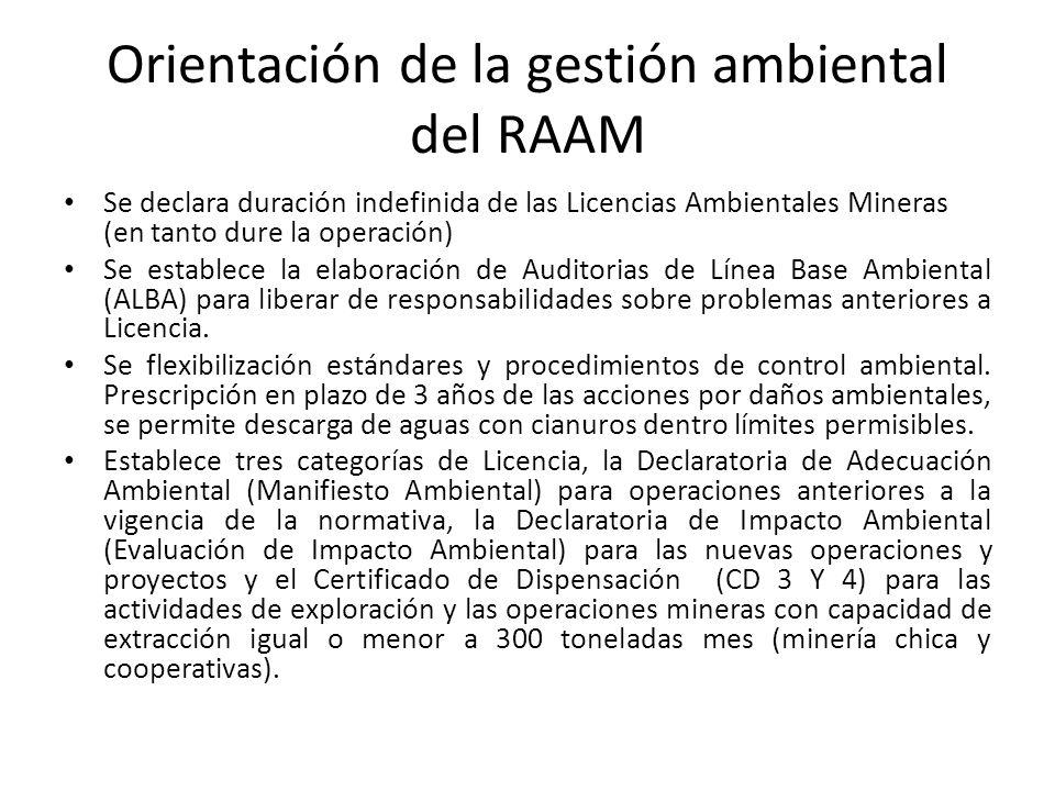 Orientación de la gestión ambiental del RAAM