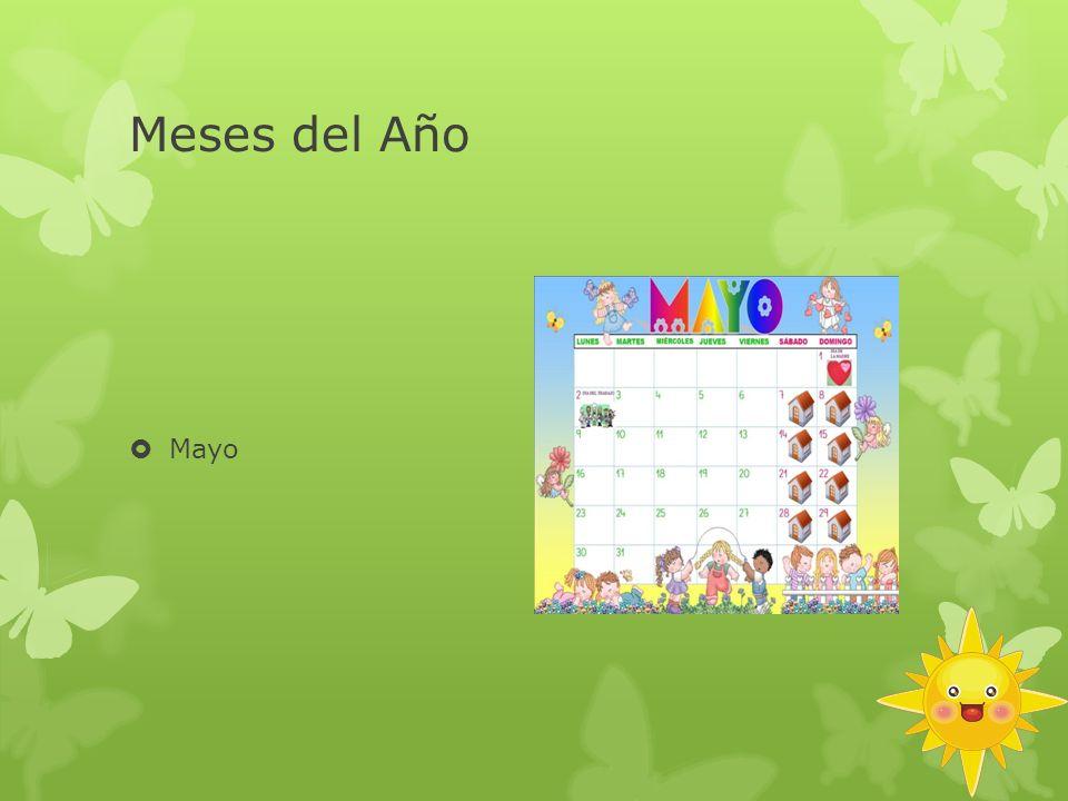 Meses del Año Mayo